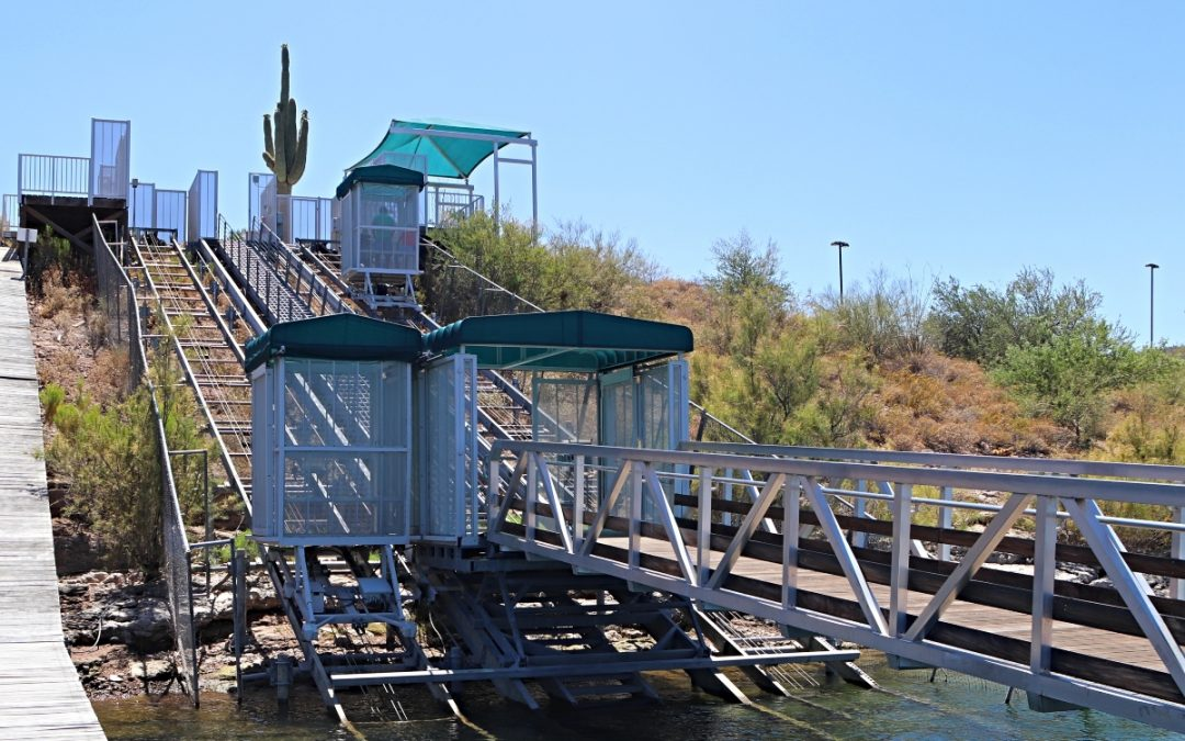 Showcase System: Scorpion Bay Marina Incline Elevator